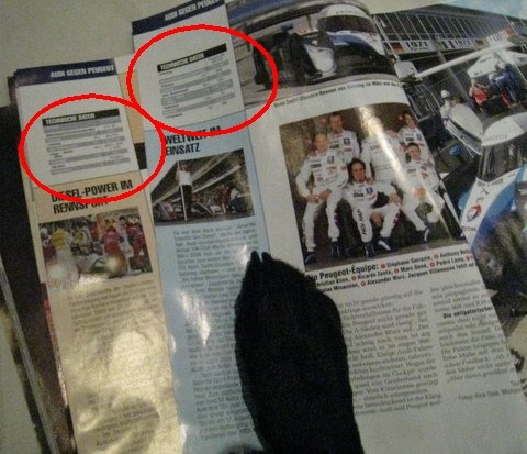 Le Mans article with my paw