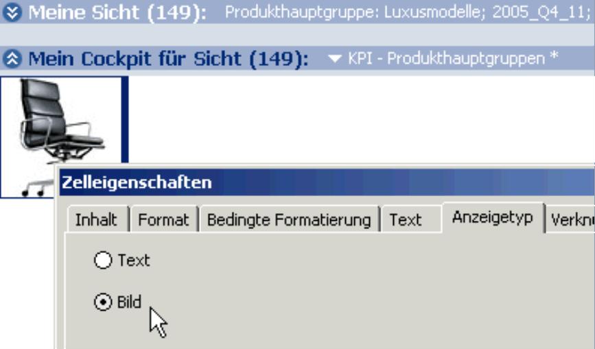 Selektion des Kontrollkästchen Bild auf der Registerkarte Anzeigetyp in den Zelleigenschaften