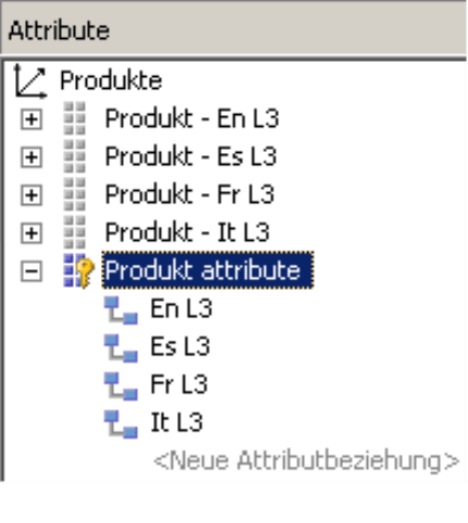 Produktattribute für die englische, spanische, französische und italienische Verkaufsbezeichnung