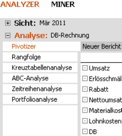 Pivotnavigation und die Analyseverfahren Rangfolge, Kreuztabellen-, ABC-, Zeitreihen- und Portfolioanalyse der Stufe Analyzer